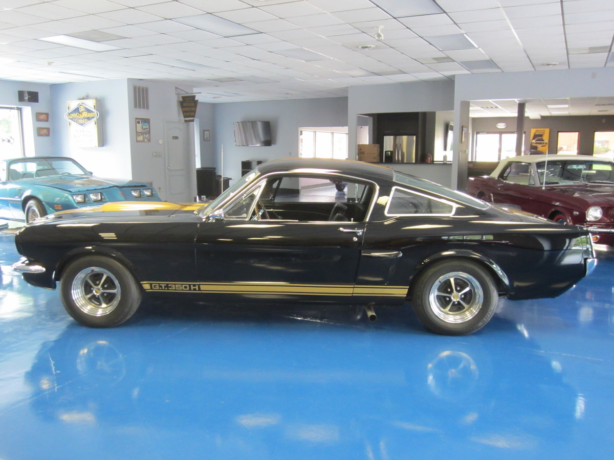 1966_shelby_gt_350_black_hertz_a